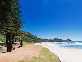 Shelly Beach: Port Macquarie