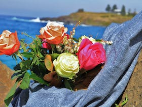 Roses by the Seaside: National Rose Championships and Conference Cover Image