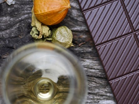 Wine and Chocolate Pairing Class