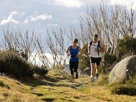 7 Peaks Trail Running