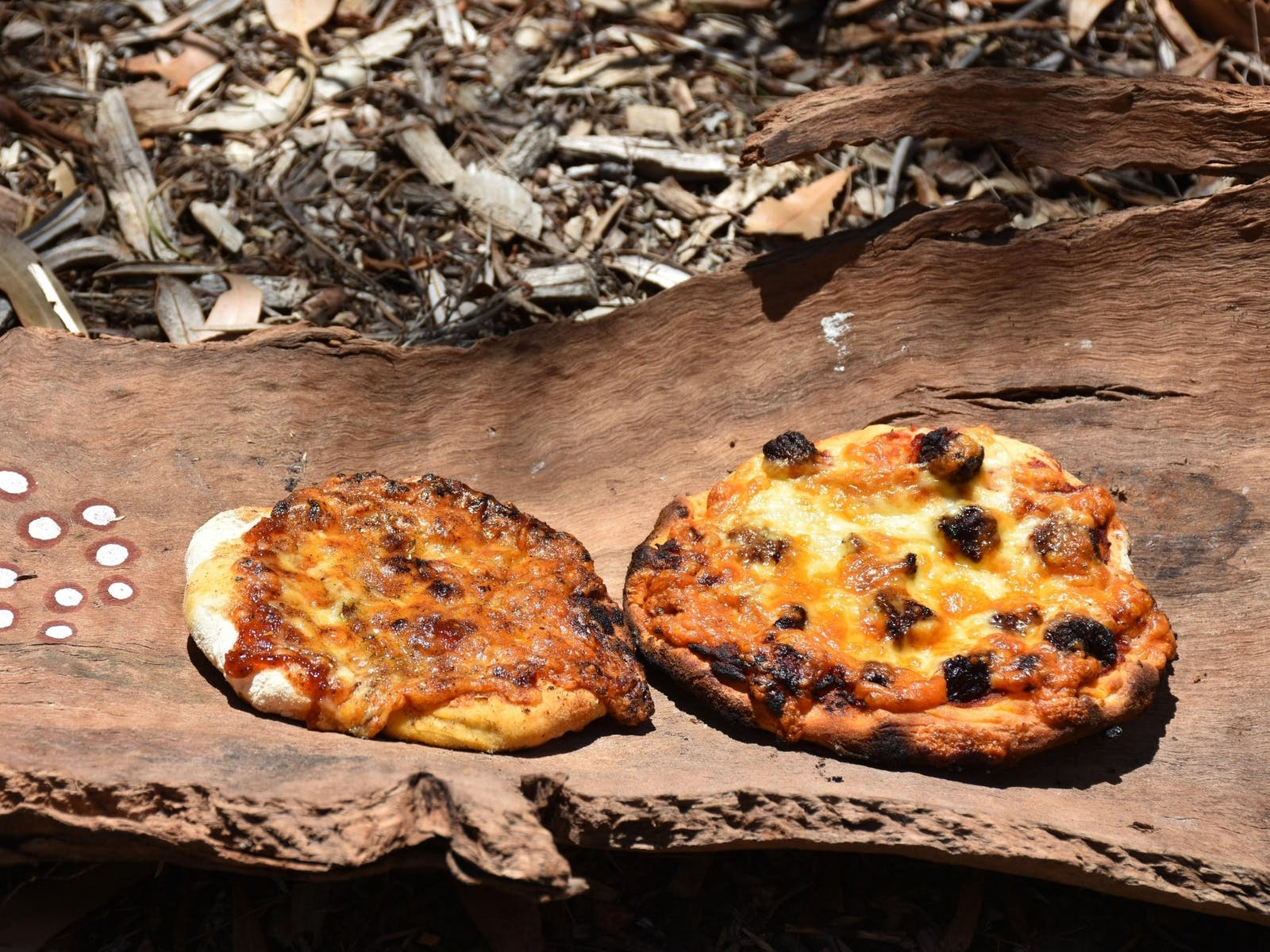 Image for Pizza Party in the Bush