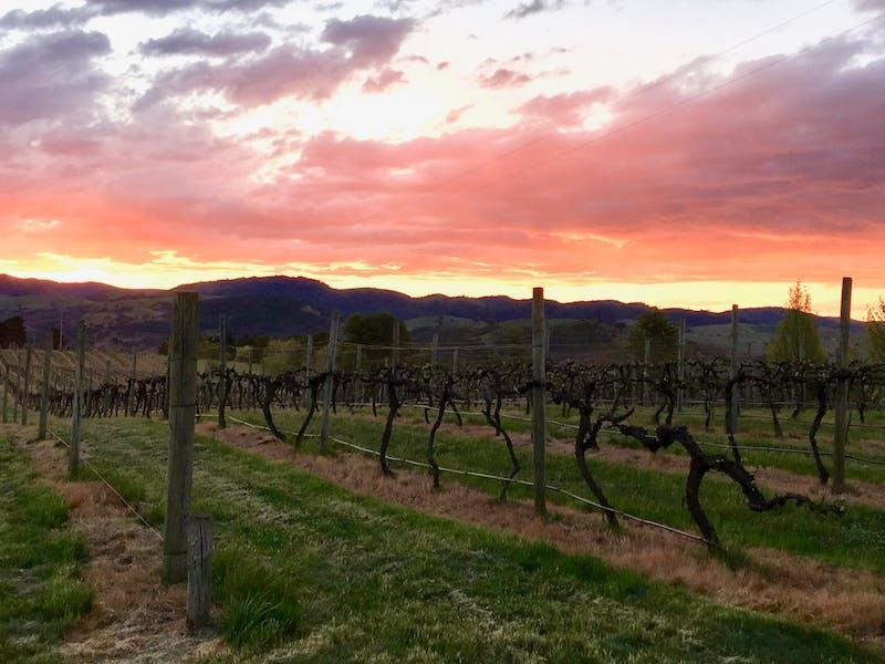 Image for Brindabella Hills Winery