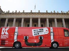 Kidney Health Bus