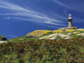 Photo of Montague Island Lighthouse