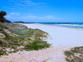Looking north at Frazers Reef, Iluka.