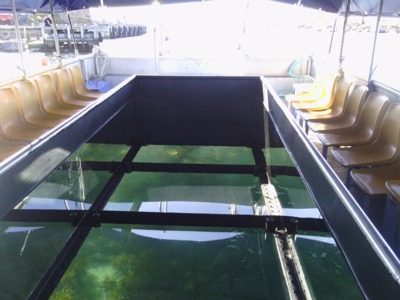 Bicheno's Glass Bottom Boat