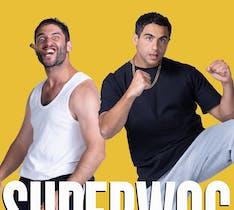 Image for Superwog