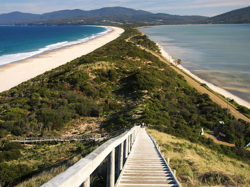 Bruny Island Adventure Tours
