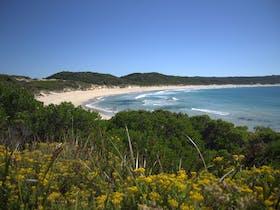 King Island coastline