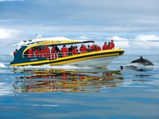 Bruny Island Cruises - Pennicott Wilderness Journeys