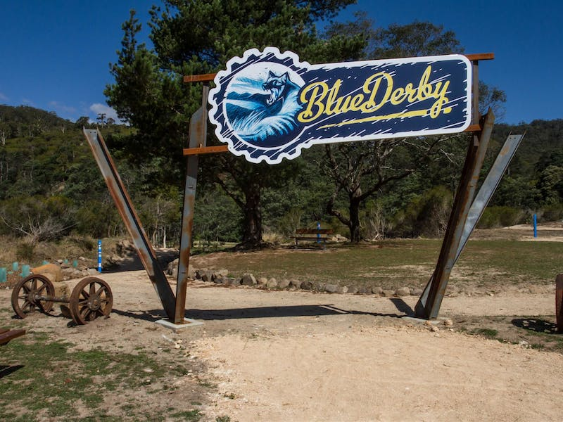 Blue Derby Mountain Bike Trails