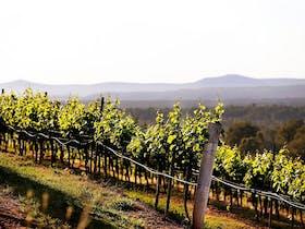 Mount View image