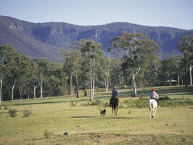 Megalong Valley image