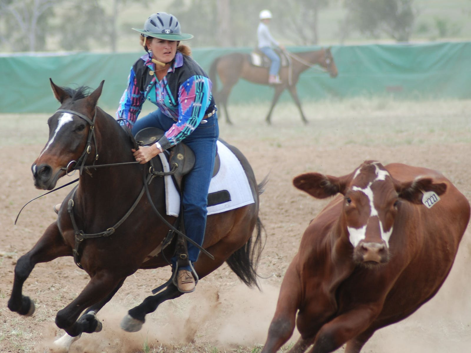 Image for Quirindi Rodeo