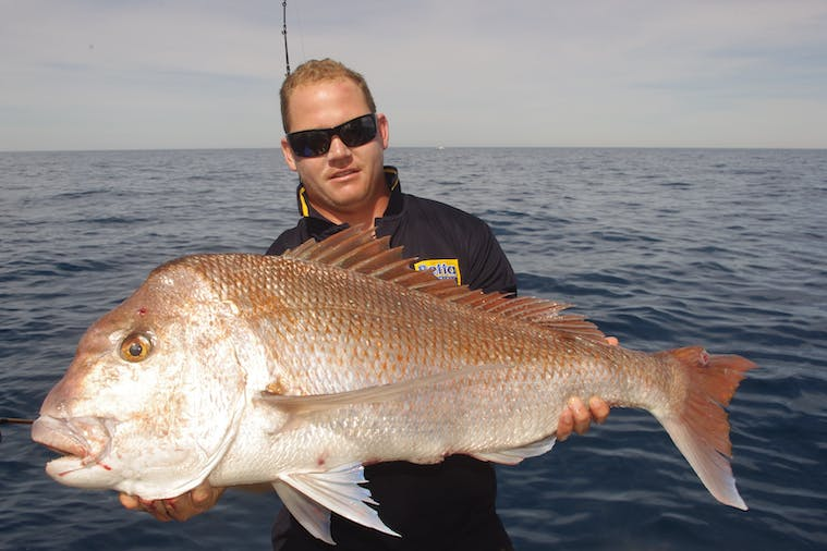 Offshore Full Day Fishing Tour