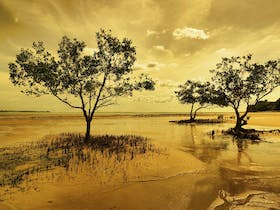 Northern Territory Landscapes by Leon Blignault Digital Photography-art