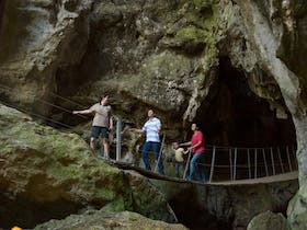Swinging bridge option to exit the Cathedral Cave tour. great fun for family of all ages.