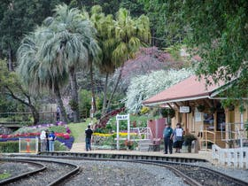 Toowoomba Carnival of Flowers - Train rides to Spring Bluff