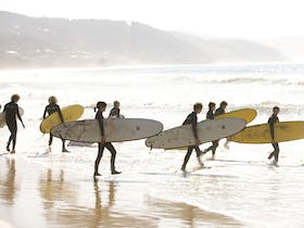 Surfing school Lorne