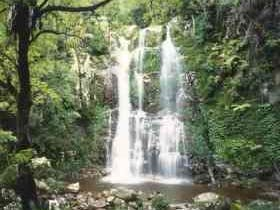 Budderoo National Park - The Falls Walk