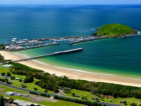 Beachside Radiology Coffs Ocean Swims