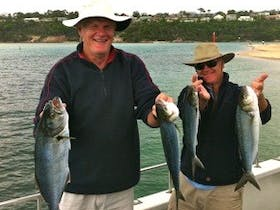 Fishpen Charters - Fishing and Whale Watching Tours