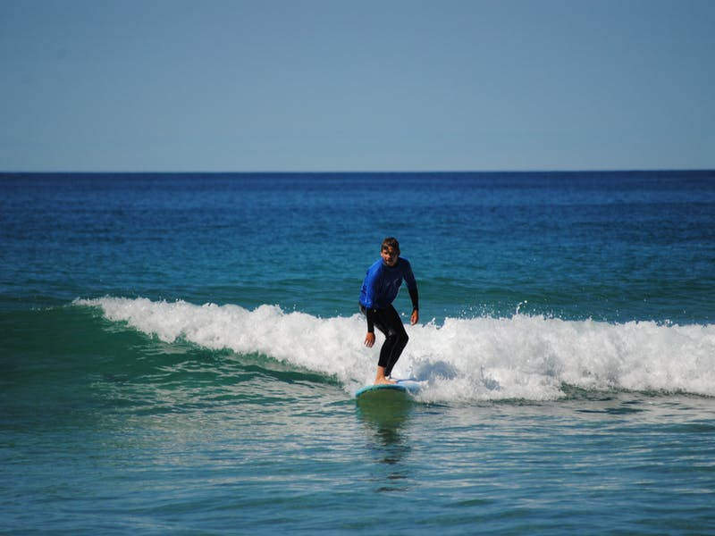 Ride a Wave with Lands Edge Surf School
