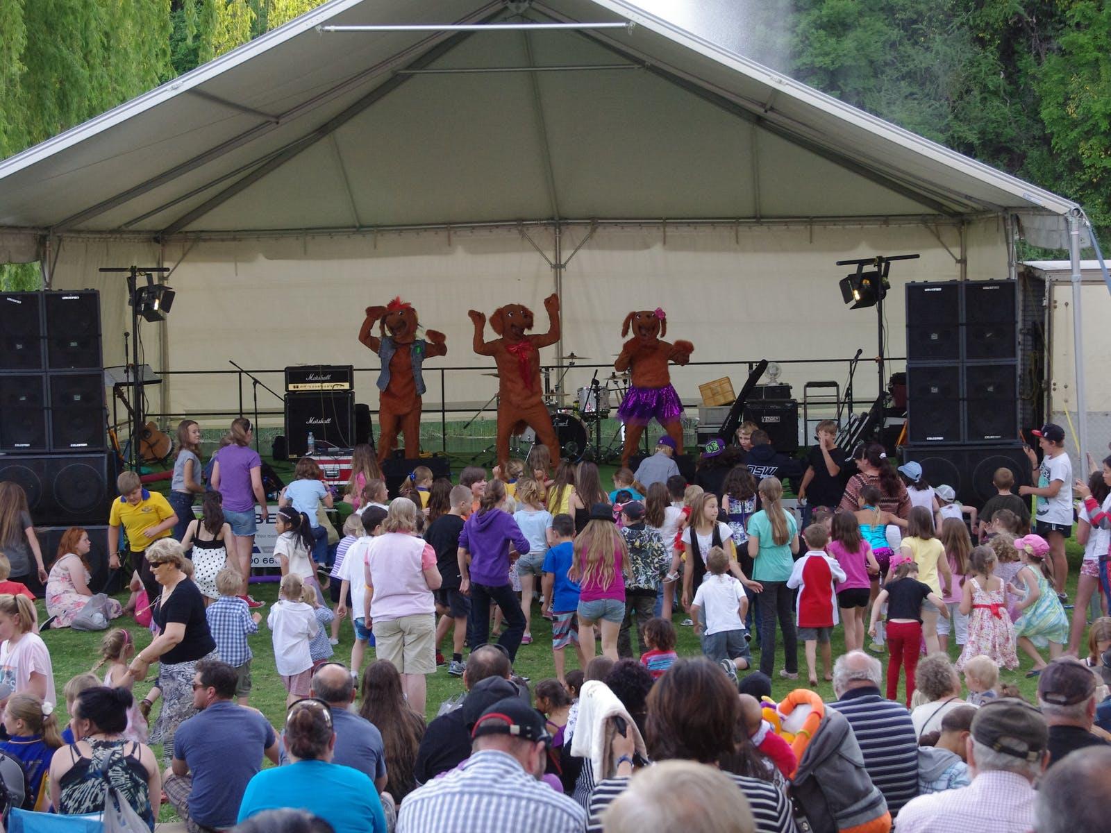 Hounddogs performing at Sapphire City Festival