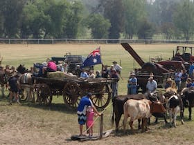 Heavy Horse and Vintage Farm Machinery Show