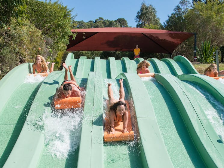 only at Jamberoo...where you control the action!