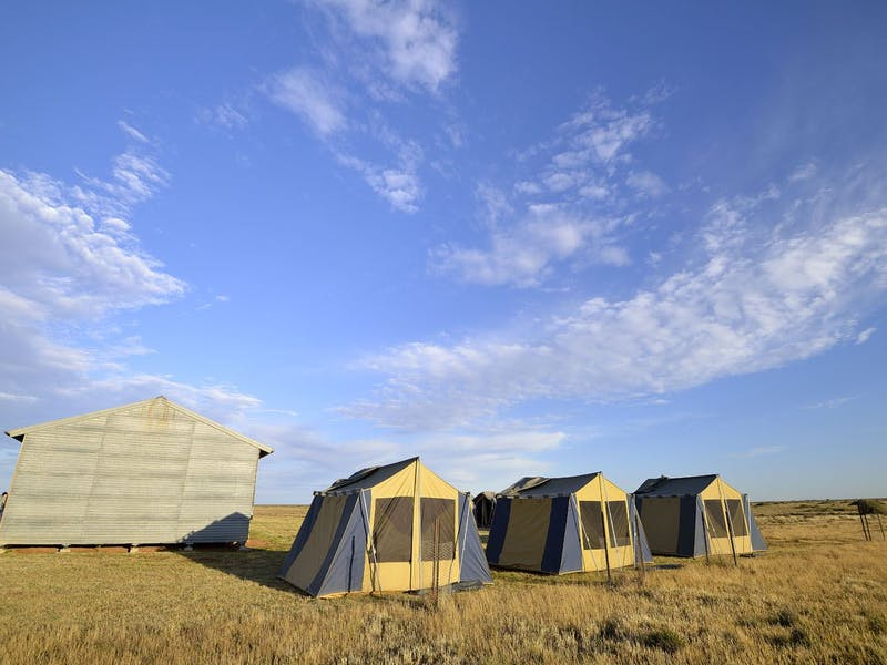 Enjoy the silence - accommodation on The Long Paddock Cattle Drive