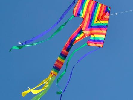 Harden Kite Festival