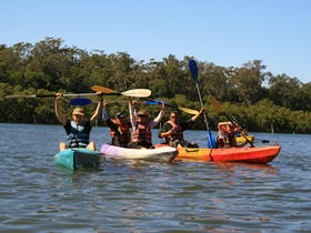 Byron Bay Eco Cruises and Kayaks