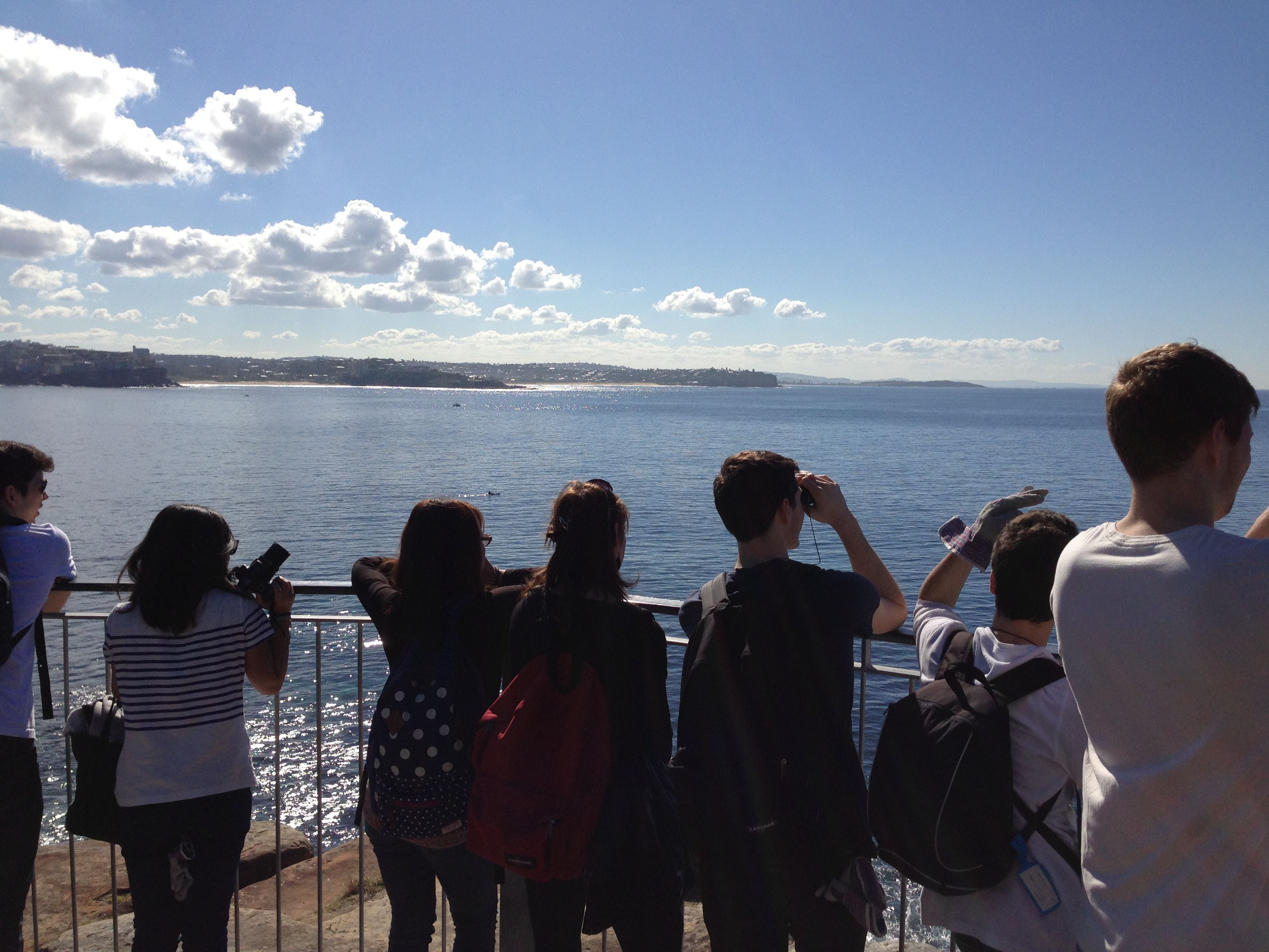 Manly Coastal Whale Walk EcoTreasures