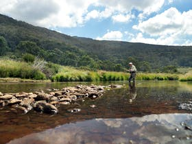 Fly Fishing Season Opens