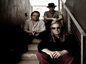 Violent Femmes live at Twilight at Taronga 2016 Summer Concert Series