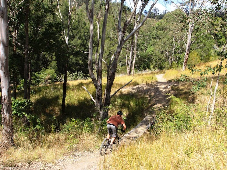 The Steps Mountain Bike Park - scenic trails