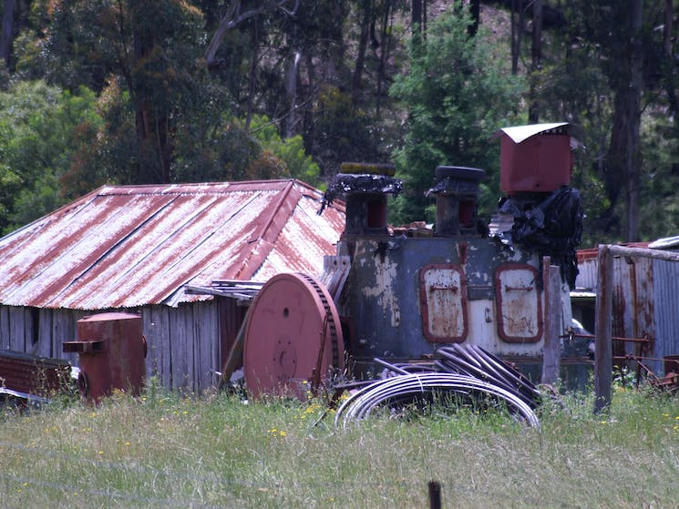 History is in abundance in the Blue Mountains, experience with a qualified eco guide.