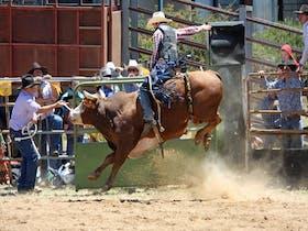 Jindabyne Rodeo