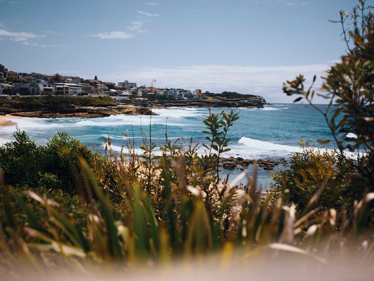 The scenic Bronte Beach in the eastern suburbs of Sydney