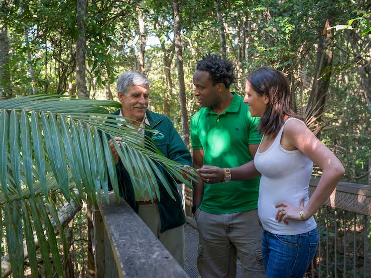 The boardwalk is best experienced with one of our knowledgeable guides