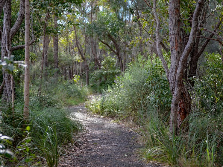 One Track for All Ulladulla