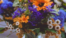 Image of the event 'Flower Arranging with Seasonal Flowers'