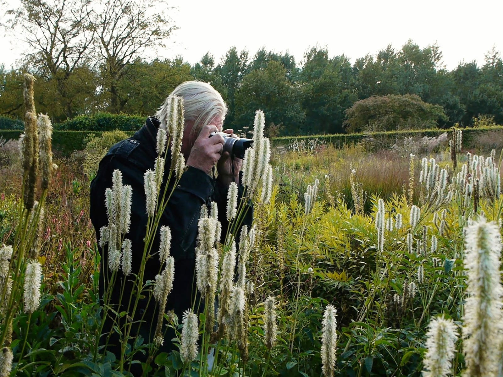 Five Seasons Film Event: Gardens of Piet Oudolf
