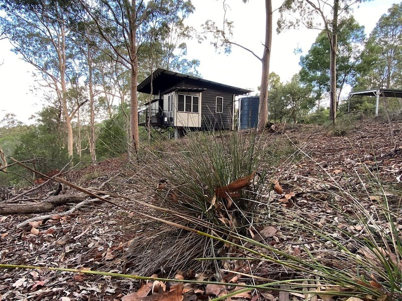 cabin in background amongst native  landscape gum trees fallen branches