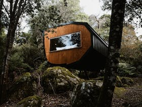 Pods accommodation in the forests of the Blue Derby Mountain Bike Trails