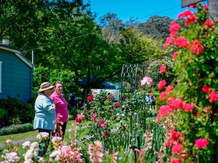 Berry Gardens Festival