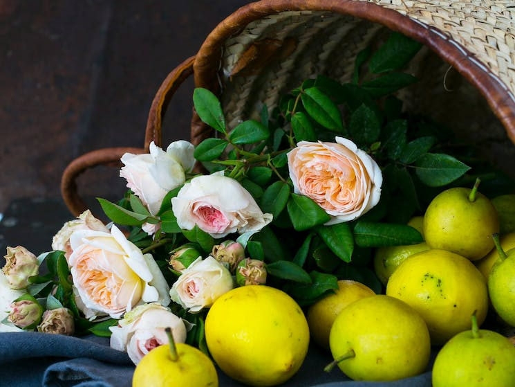 French baskets, flowers and fruit