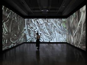Installation view, The Garden of Forking Paths: Mira Gojak and Takehito Koganezaw, 2018-2019