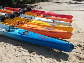 Point Piper Kayaks